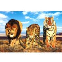 Wild Cats - Maxi Poster - 61 x 91.5cm