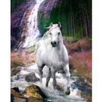 Bob Langrish Waterfall - Mini Poster - 40 x 50cm