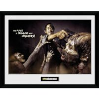 The Walking Dead Glenn Attack - 16 Inch x 12 Inch Framed Photographic