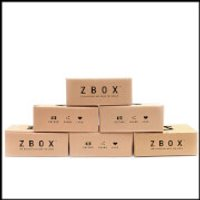 ZBOX 6 Month Subscription - WS