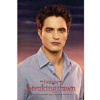 Twilight Breaking Dawn Part 1 Edward - 24 x 36 Inches Maxi Poster