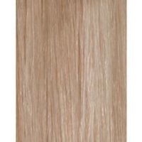 Beauty Works 100% Remy Colour Swatch Hair Extension - Champagne Blonde 613/18