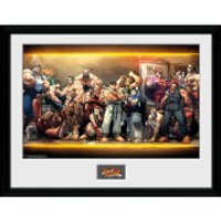 Street Fighter Characters - 16 x 12 Inches Framed Photographic