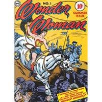 DC Comics Wonder Woman Lasso Large Tin Sign