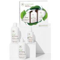 Paul Mitchell Tea Tree Scalp Care Anti-Thinning Regimen Kit