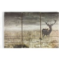 Graham & Brown Highland Stag Print On Wood Wall Art - Stag Gifts