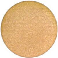 MAC Small Eye Shadow Pro Palette Refill - Frost - Goldmine