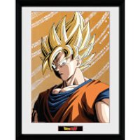 Dragon Ball Z Goku 2 - 16 x 12 Inches Framed Photograph