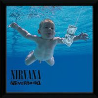 Nirvana Nevermind - 10 x 8 Inches Bagged Photograph - Nirvana Gifts