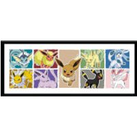 Pokémon Eevee Evolution - 30 x 12 Inches Framed Photograph - Eevee Gifts