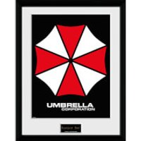 Resident Evil Umbrella - 16 x 12 Inches Framed Photograph