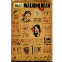 The Walking Dead Infographic - 61 x 91.5cm Maxi Poster - The Walking Dead Gifts