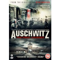 Auschwitz: The Final Journey