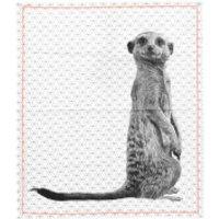 Cotton Tea Towel Raster with Neon Stitch - Meerkat
