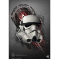 Star Wars The Original Stormtrooper TK421 Print - Stormtrooper Gifts