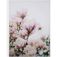 Art for the Home Magnolia Blossoms Printed Canvas - Home Gifts
