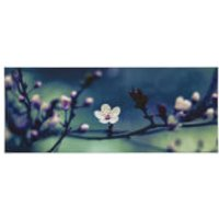 Art for the Home Petite Petals Printed Canvas - Home Gifts