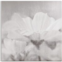 Art for the Home Daisy Daydreams Printed Canvas - Home Gifts