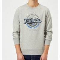 Magic The Gathering Tolaria Academy Sweatshirt - Grey - 5XL - Grey