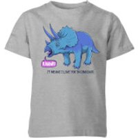 Rawr It Means I Love You Kids' T-Shirt - Grey - 11-12 Years - Grey - Love Gifts