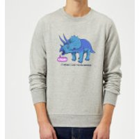 Rawr It Means I Love You Sweatshirt - Grey - S - Grey - Love Gifts