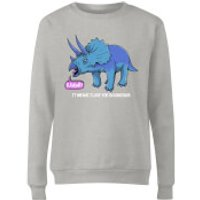 RAWR! It Means I Love You Women's Sweatshirt - Grey - M - Grey