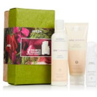 Aveda Colour Conserve Set (worth £50.50)