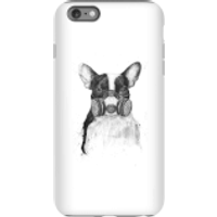 Balazs Solti Masked Bulldog Phone Case for iPhone and Android - iPhone 6 Plus - Tough Case - Gloss