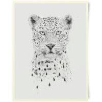 Leopard Art Print - Leopard Gifts