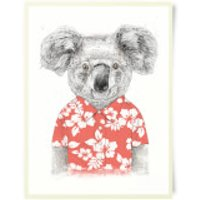 Koala Bear Art Print - Bear Gifts