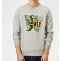 Toy Story Partysaurus Rex Sweatshirt - Grey - 4XL - Grey