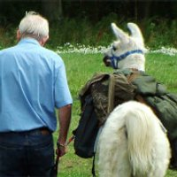 Llama Trekking for Two