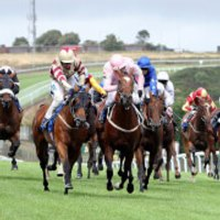Winning Horse Racing Day for Two - Horse Racing Gifts