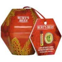 Burt's Bees A Bit of Burt's Bees - Pomegranate Gift Set