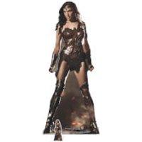 Wonder Woman (Movie) Lifesize Cardboard Cut Out - Woman Gifts