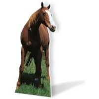Mustang - Horse Lifesize Cardboard Cut Out - Horse Gifts