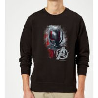 Avengers Endgame Ant Man Brushed Sweatshirt - Black - XL - Black