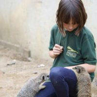 Junior Animal Keeper Experience at Millets Falconry Centre - Falconry Gifts