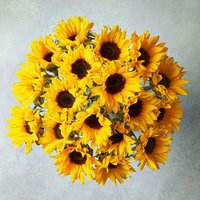 Foundation Sunflowers Bouquet Yellow or orange