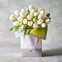 Tulip Collection Gift Bag Pastel