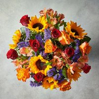 Medium Foundation Fiesta Sunflower Bouquet Yellow or orange