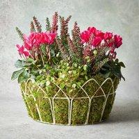 Vintage Autumn Garden Planter Pink