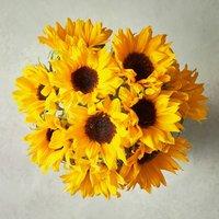 Foundation Sunflowers - ready to arrange Yellow or orange