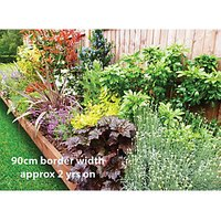 Garden on a Roll Mixed Sunny Plant Border - 600mm x 3m