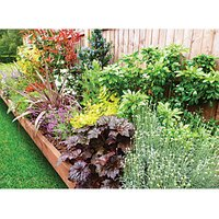 Garden on a Roll Mixed Sunny Plant Border - 900mm x 5m