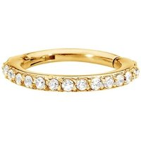 Gold Plated Segment Seal Ring Piercing