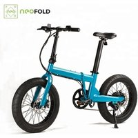 Portable 20Inch Two Wheel Electric Bike Folding With Fat Tyre
