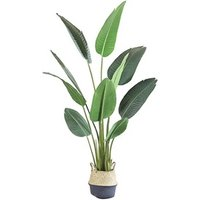 5 Years Factory Free Samples Green Bonsai Plants Decorative Interior Plastic Banana Artificial Tree