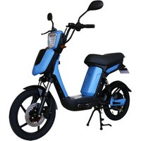 2019 the newest style 12ah 18ah 20ah lead acid lithium battery 200w 250W 350w 450w motor pedal assist adult eec electric bicycle