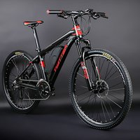 Cheap price electric bicycle with 36v 13ah e bike battery